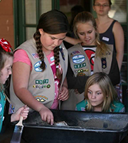 Girl Scout Investigations